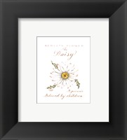 Framed April's Flower, The Daisy
