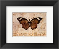 Framed Butterfly V