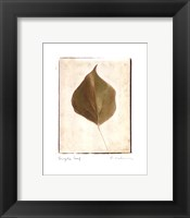 Framed Single Leaf