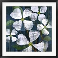 Framed White Magnolia Square