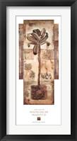 Framed Madagascar Majesty II