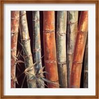 Framed Caribbean Bamboo I