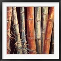 Caribbean Bamboo I Framed Print