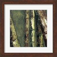 Framed Bamboo Columbia I