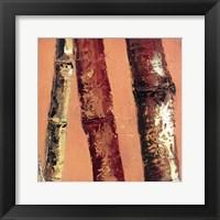 Bamboo Columbia II Framed Print