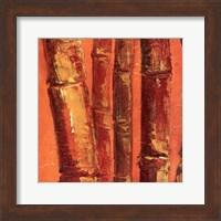 Framed Bamboo Columbia III