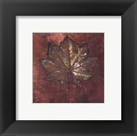 Framed Maple I