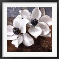 Framed White Magnolia II