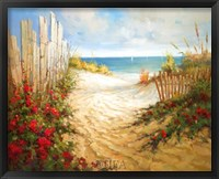 Framed Seaside Pathway