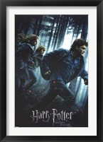 Framed Harry Potter Deathly Hollows