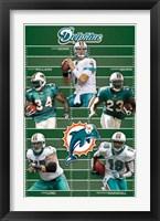 Framed Dolphins - Team 2010