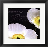 Poppies Over Black I Framed Print