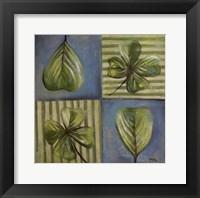 Natura I Framed Print