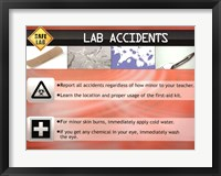 Framed Lab Accidents