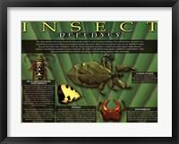 Framed Insect Defenses
