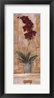Orchid Panel II Framed Print