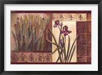 Framed Iris Fantasy