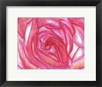 Framed Rose