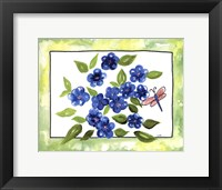 Framed Petunia in Spring