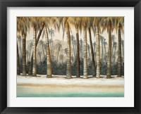 Framed Tourmaline Coast