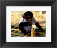 Framed Chimp - Time for a drink