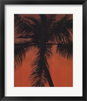 Framed Palm on Orange