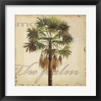 La Palma IV Framed Print