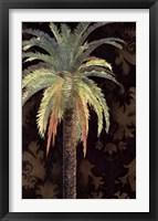 Framed Palms II