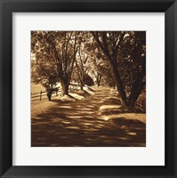 Framed Ash Lawn II