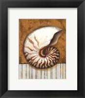 Vintage Shell I - mini Framed Print