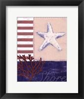 Framed American Coastal III