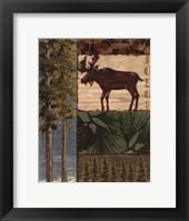 Framed Nature Trail I