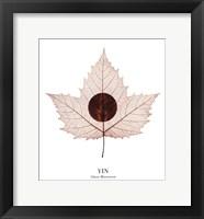 Framed Yin