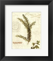 Aromatique II Framed Print