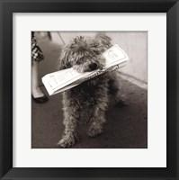 Paris Dog II Framed Print