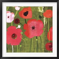Framed Ranunculus on Green