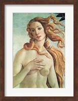 Framed Venus, detail from The Birth of Venus, c.1485