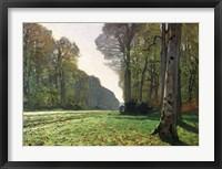 Framed Road to Bas-Breau, Fontainebleau (Le Pave de Chailly), c.1865