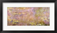 Framed Waterlilies, after 1916