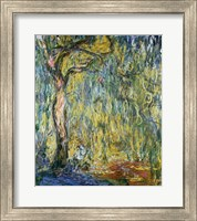 Framed Large Willow at Giverny, 1918