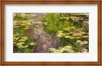 Framed Waterlilies (green horizontal)