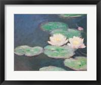 Framed Waterlilies, Evening; detail