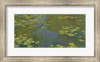 Framed Lily Pond