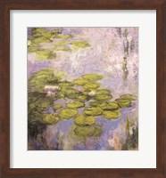 Framed Nympheas, 1916-19