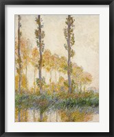 Framed Three Trees, Autumn, 1891