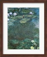 Framed Water-Lilies