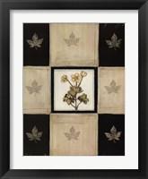 Framed Maria's Bloom 1