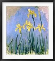 Framed Yellow Irises, c.1918-25
