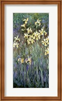 Framed Yellow Irises