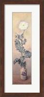 Framed White Poppy, 1883